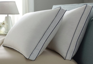 Pacific Coast Double Down Around Pillow Review