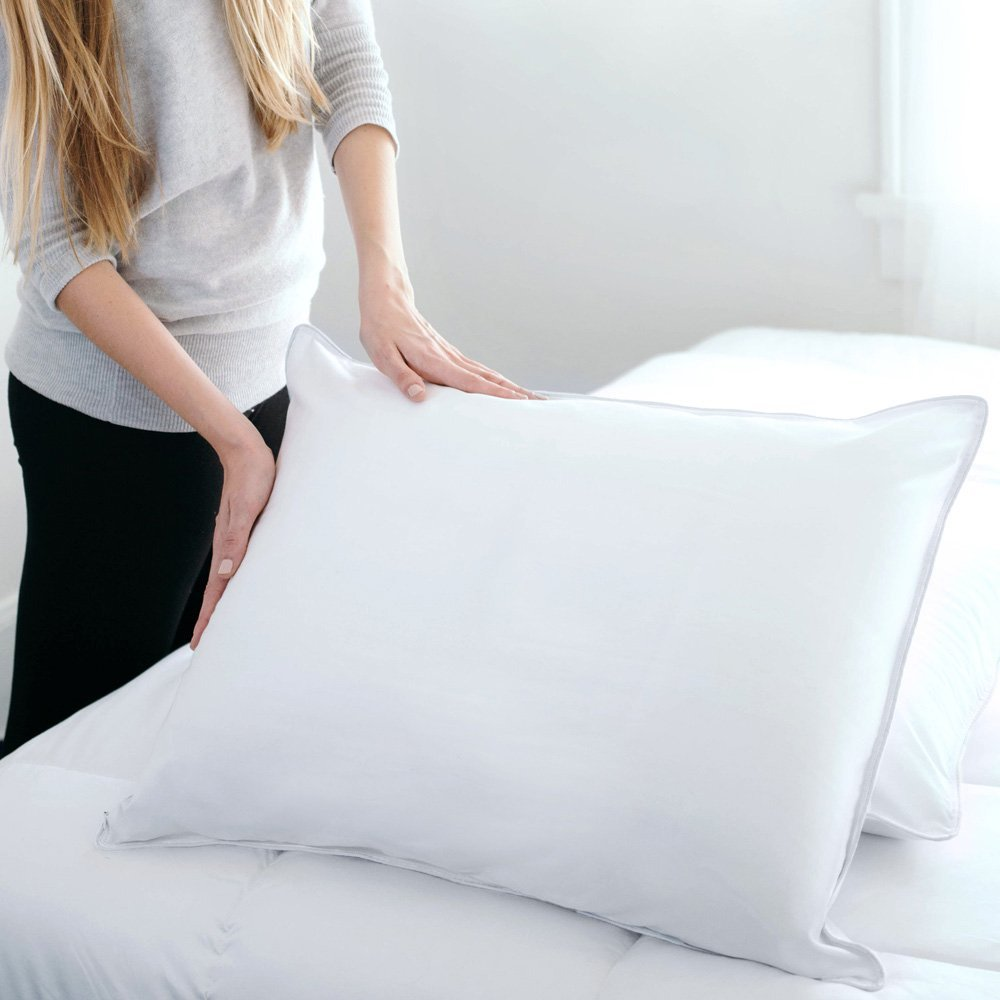 Sealy Posturepedic hypoallergenic soft down pillow Review